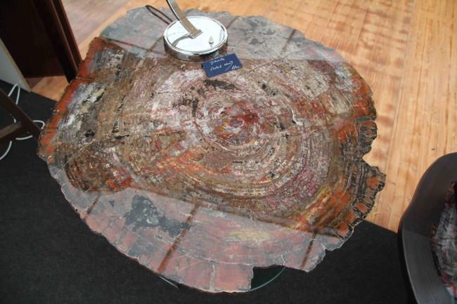 Plaque de bois pétrifiè/ petrified wood