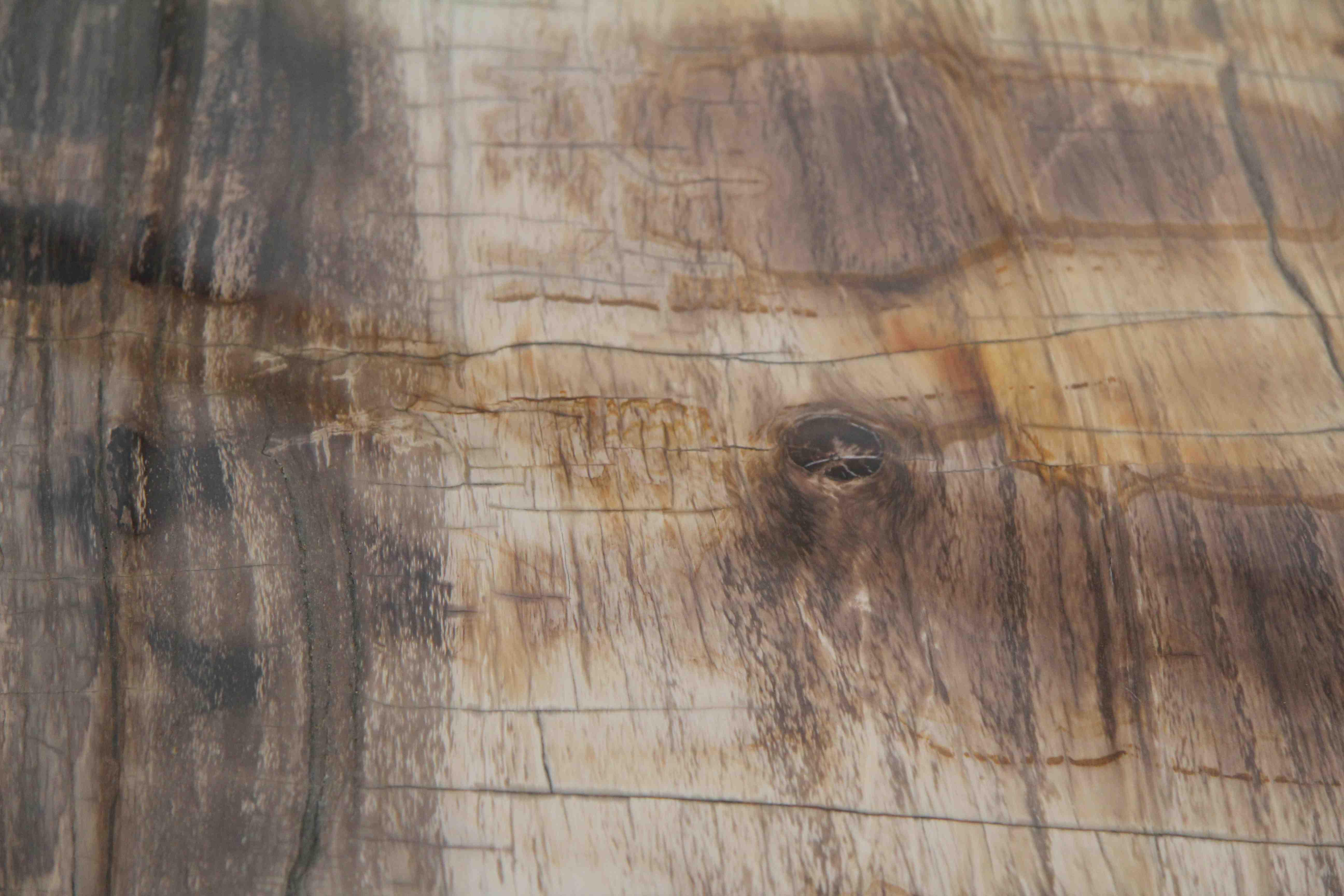 table en bois p trifi gabrielle petrified wood gabrielle esprit art d co vente meubles art. Black Bedroom Furniture Sets. Home Design Ideas
